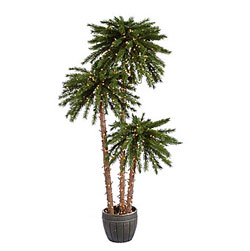 Solar String Lights For Palm Trees : Potted Palm Tree - 4,5,6 Feet Tall - 500 Clear Lights