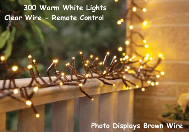 The Best Patio Lights - 300 Warm White Bulbs on Clear Wire with Remote Control 10 Foot Long & Illuminated Garden: The Best Patio Lights - 300 Warm White Bulbs on ...